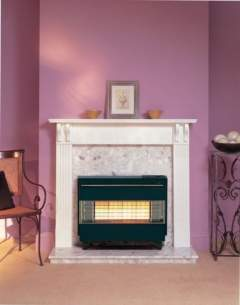 Robinson Willey Gas Fires and Wall Heaters -  R Willey Firegem Visa Highline Black Ng