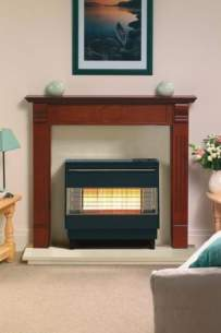 Robinson Willey Gas Fires and Wall Heaters -  R W Firegem Visa Highline Black Electrnc