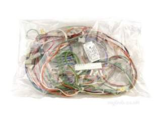 Keston Boiler -  Keston B13410002 Harness