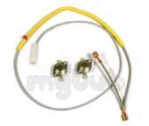 Indesit Domestic Spares -  Hotpoint 169405 Thrm Fuse And Stats P-tub