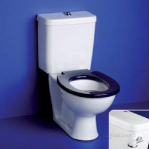 Armitage Shanks Commercial Sanitaryware -  Armitage Shanks Contour 21 Cistern Bsio White 4.5 Sy And Spatlv